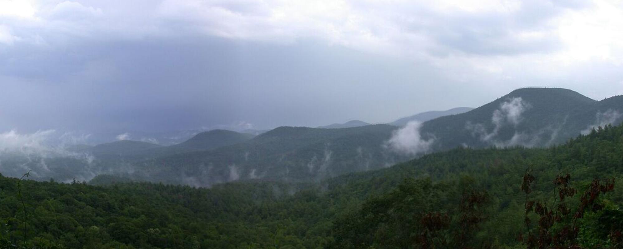 Biodiversity of the Southern Appalachians